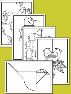 BIRDS: CHARLEY HARPER COLORING CARDS | Bizziebaby | Bizziebaby